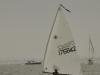 mersea-week-2012-2