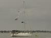 mersea-week-2012-22